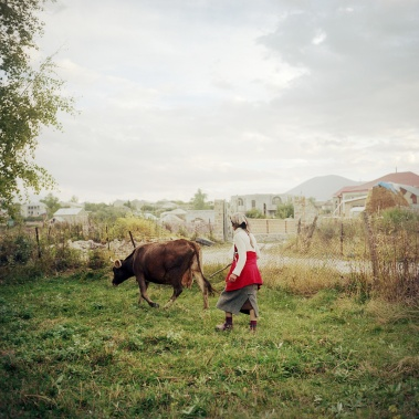 """18/09/13 - Cirush va chercher sa vache le soir. Elle ne la confie pas au """"berger"""" du village mais l'emmène sur son terrain. Elle avait tendance à s'enfuir du troupeau quand elle partait avec le berger. Son mari et un de ses fils (marié) sont partis en Russie. Son autre fils fait son service militaire dans le Haut-Karabagh. Sa belle-fille ne vit pas avec elle, elle est retournée vivre chez sa mère malade. Cirush se débrouille donc seule et s'occupe de sa belle-mère, âgée de 90 ans. 09/18/13 - Cirush fetches her cow in the evening. She doesn't give it to the """"shepherd"""" because she tended to escape from the herd of the village so she takes it on her own land. Her husband and one of her sons (married) work Russia. Her other son diis doing his military service in Nagorno-Karabakh. Her daughter in law does not live with her, she returned to live with her ailing mother. So Cirush make her own way and takes care of her stepmother, aged 90."""
